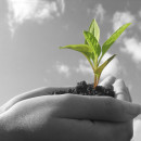 10 Keys for Church Growth